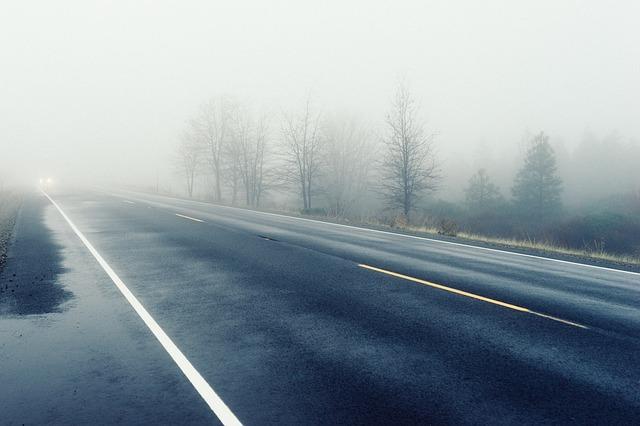 Mokrá cesta v hmle, okolo ktorej sú stromy bez lístia.jpg